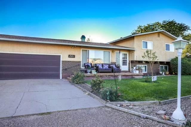 261 S Dacona Dr, Pueblo West, CO 81007 (MLS #188547) :: The All Star Team