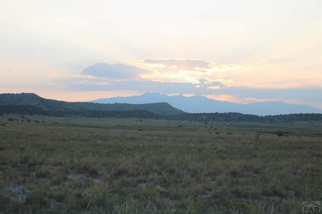 LOT 154 Ghost River Ranch #154, Rye, CO 81069 (MLS #188564) :: The All Star Team