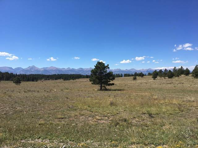TBD Panorama Dr #110, Westcliffe, CO 81252 (MLS #188565) :: The All Star Team
