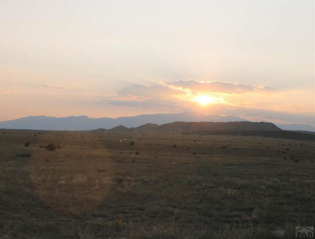 LOT 153 Ghost River Ranch #153, Rye, CO 81069 (MLS #188679) :: The All Star Team