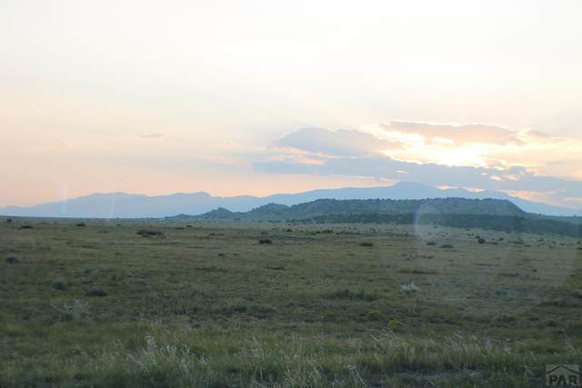 LOT 152 Ghost River Ranch #152, Rye, CO 81069 (MLS #188680) :: The All Star Team