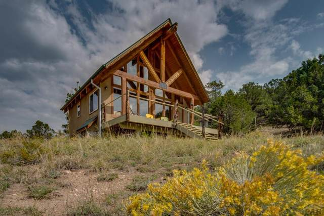 10955 County Rd 255, Westcliffe, CO 81252 (MLS #188706) :: The All Star Team