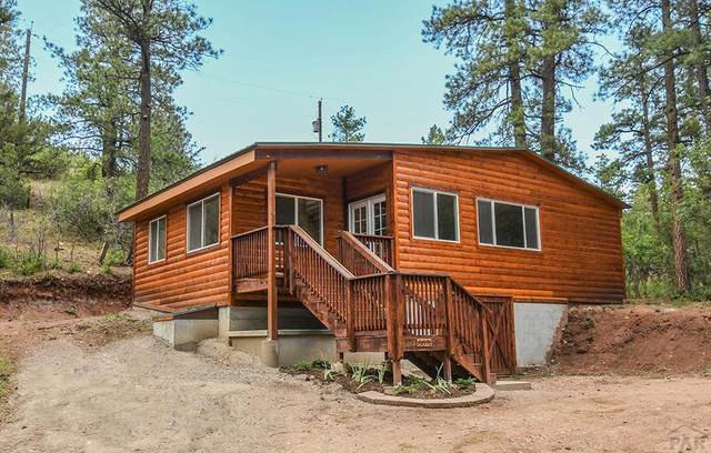 8891 Ula Trail, Beulah, CO 81023 (MLS #188724) :: The All Star Team