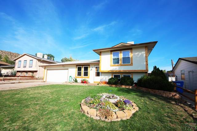 609 Phay Ave, Canon City, CO 81212 (MLS #189939) :: The All Star Team