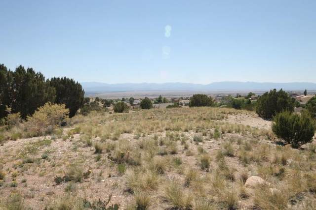 925 S Sterling Ln #47, Pueblo West, CO 81007 (MLS #190073) :: The All Star Team