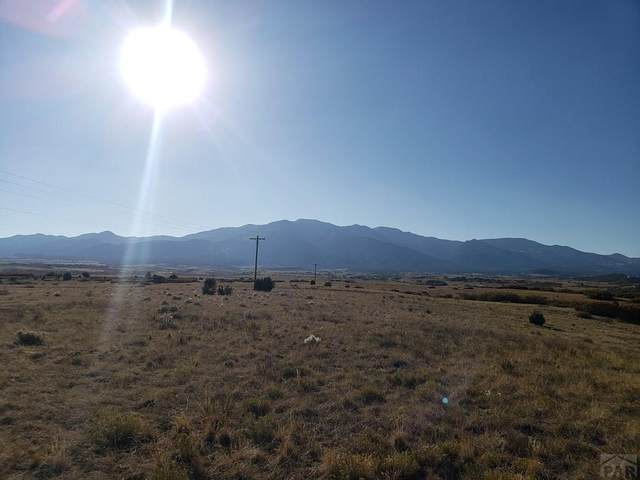 TBD Overlook #259, Colorado City, CO 81019 (MLS #190079) :: The All Star Team