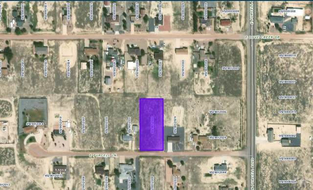 1167 E Purcell Lane #16, Pueblo West, CO 81007 (MLS #190087) :: The All Star Team
