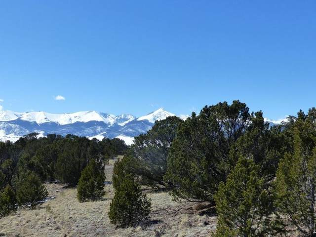648 Ute Rd #12, Westcliffe, CO 81252 (MLS #190094) :: The All Star Team