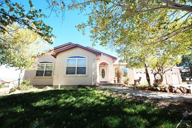 138 Gere Ct, Canon City, CO 81212 (MLS #190105) :: The All Star Team