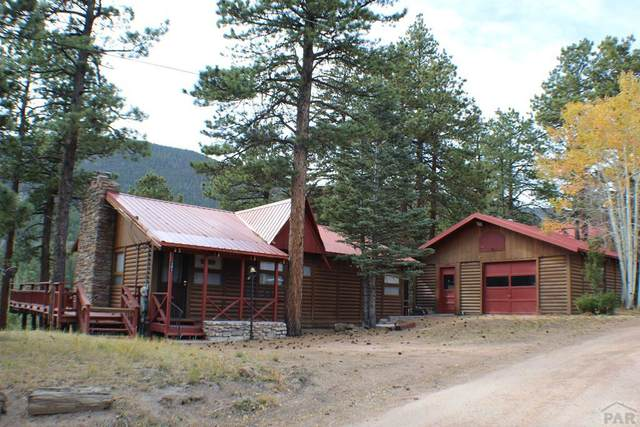 121 St. Charles Dr, Rye, CO 81069 (MLS #190155) :: The All Star Team
