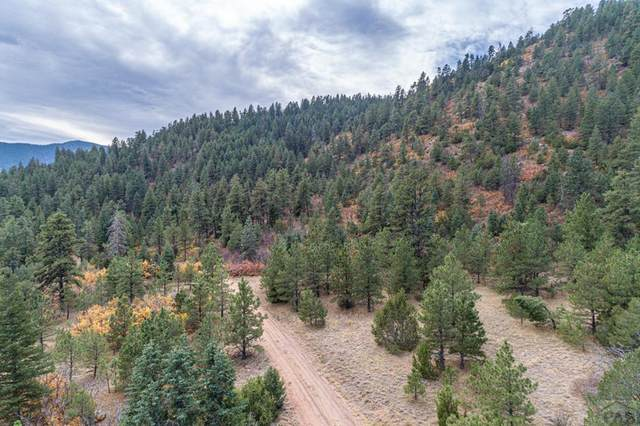 0 Twin Creek Ranches #0, Florence, CO 81226 (MLS #190311) :: The All Star Team