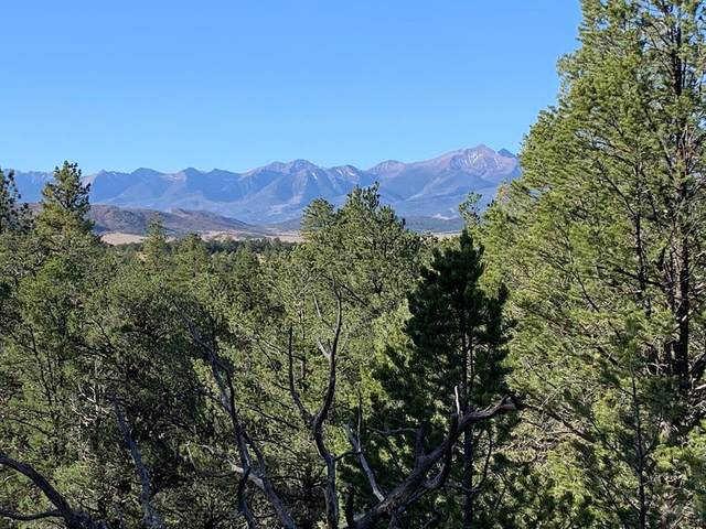 388 Paint Brush Trail None, Cotopaxi, CO 81223 (MLS #190624) :: The All Star Team