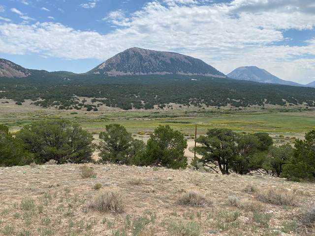 TBD County Rd 560 Na, Gardner, CO 81040 (MLS #190714) :: The All Star Team