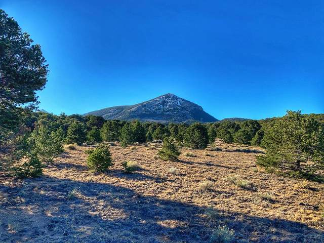 187 &178 Colorado Land And Grazing #178, Gardner, CO 81040 (MLS #190831) :: The All Star Team
