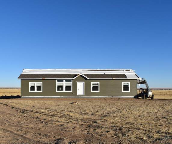 923 Spotted Owl Way, Calhan, CO 80808 (#190906) :: The Artisan Group at Keller Williams Premier Realty