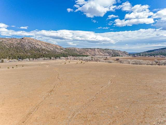 TBD North Creek Cut-Off #3, Beulah, CO 81023 (#192292) :: The Artisan Group at Keller Williams Premier Realty