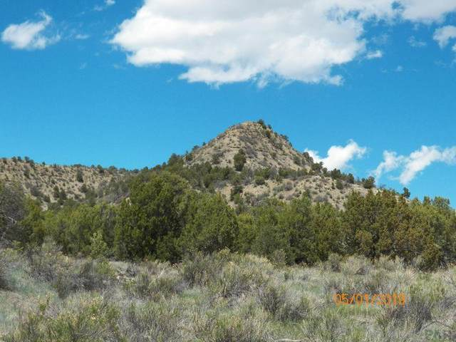 tbd County Rd 69 #01, Trinidad, CO 81082 (#192882) :: The Artisan Group at Keller Williams Premier Realty