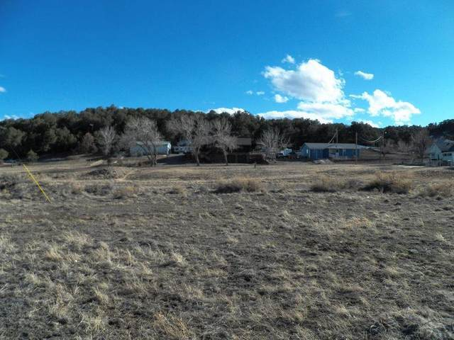 000 Chambers St 5-67, Aguilar, CO 81020 (#192885) :: The Artisan Group at Keller Williams Premier Realty