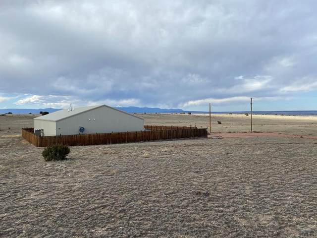 7445 Rex Rd, Pueblo, CO 81005 (#192893) :: The Artisan Group at Keller Williams Premier Realty