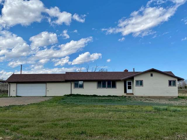 38219 County Rd 32, Trinidad, CO 81082 (#193380) :: The Artisan Group at Keller Williams Premier Realty