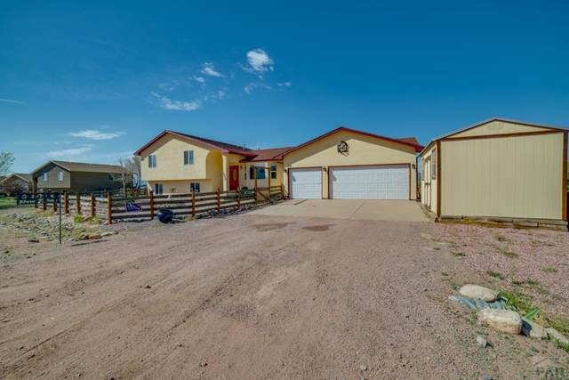 2920 Paw Prints, Canon City, CO 81212 (#193394) :: The Artisan Group at Keller Williams Premier Realty