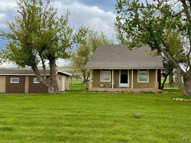 9011 S 3R Rd, Beulah, CO 81023 (#193553) :: The Artisan Group at Keller Williams Premier Realty