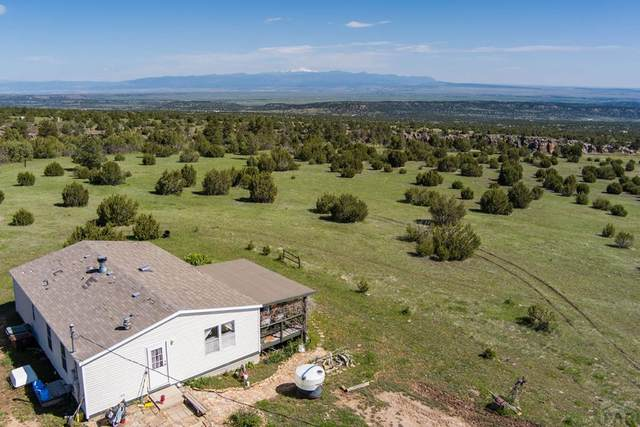 8470 Savage Rd, Beulah, CO 81023 (#193855) :: The Artisan Group at Keller Williams Premier Realty