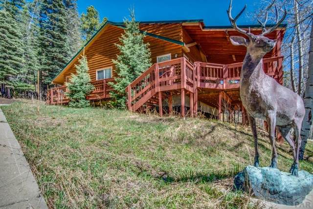 31 Angel Rd, San Isabel, CO 81069 (MLS #185831) :: The All Star Team