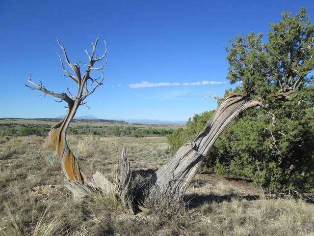 Lot 115 Ghost River Ranch #115, Walsenburg, CO 81089 (MLS #186225) :: The All Star Team of Keller Williams Freedom Realty