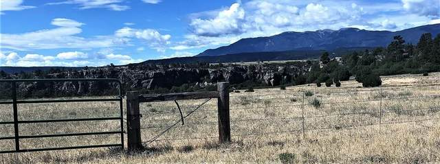 40 Acres S Waterbarrel Rd None, Beulah, CO 81023 (MLS #187406) :: The All Star Team
