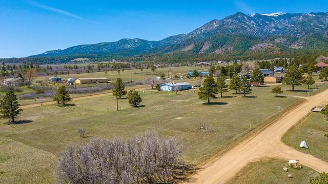 8066 Oak Rd 4,5,, Rye, CO 81069 (#192936) :: The Artisan Group at Keller Williams Premier Realty