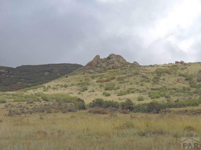TBD Elk Run - Photo 1