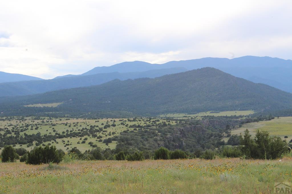 Lot 8 Good Pasture Dr - Photo 1