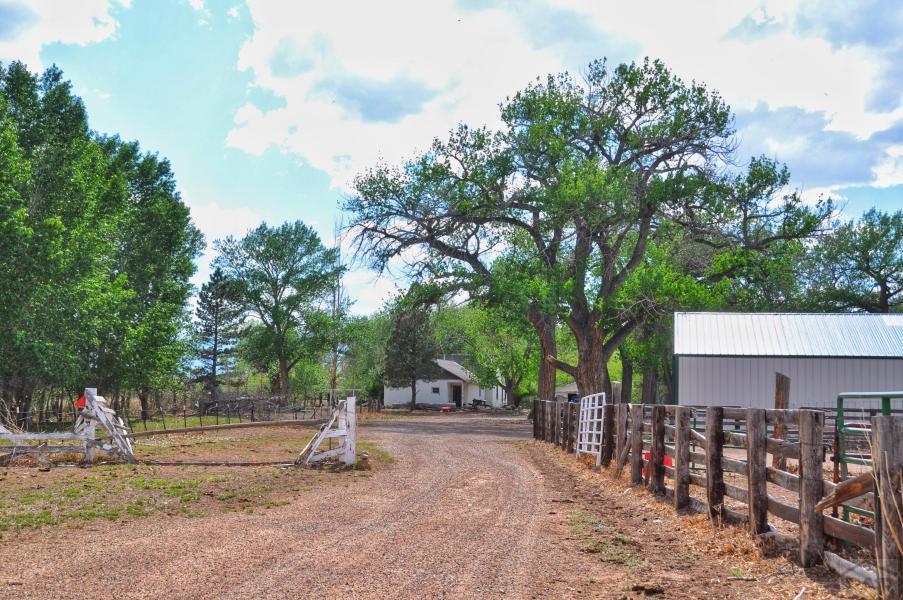 3251 County Rd 615 - Photo 1
