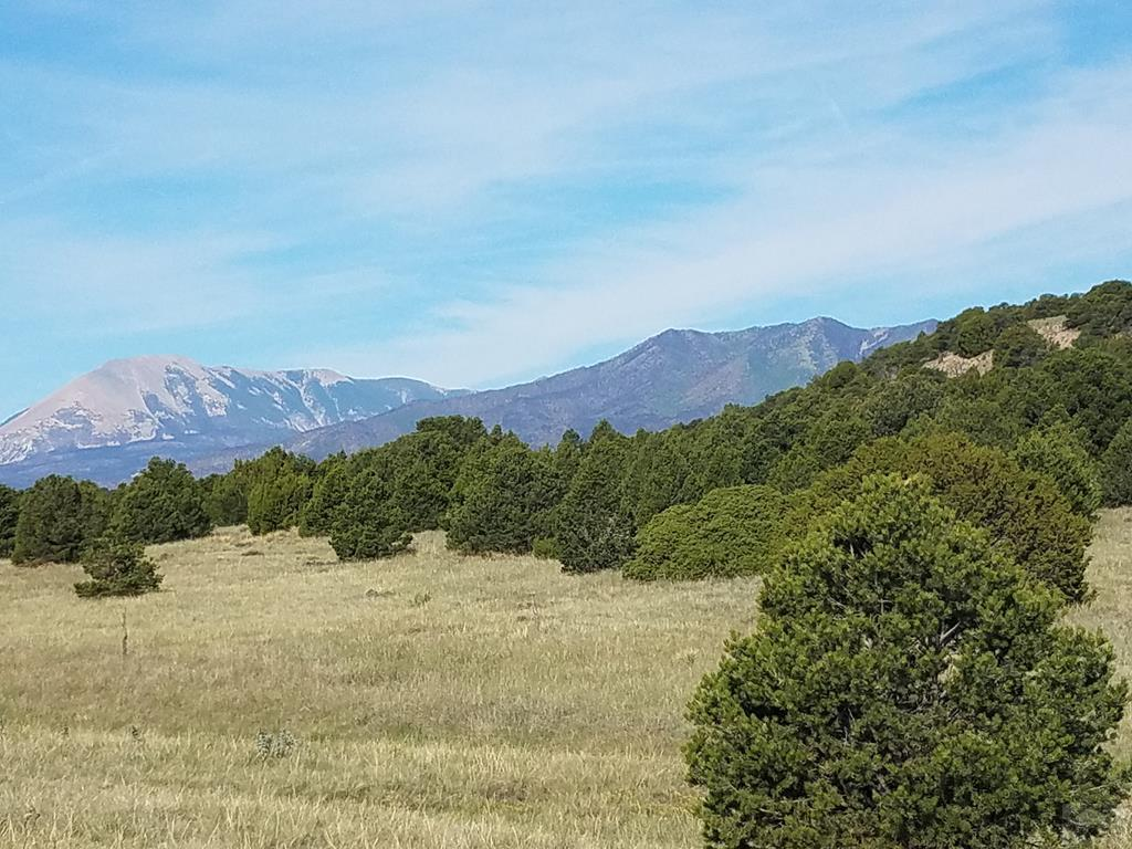 Lot 44 Navajo Ranch Resort - Photo 1