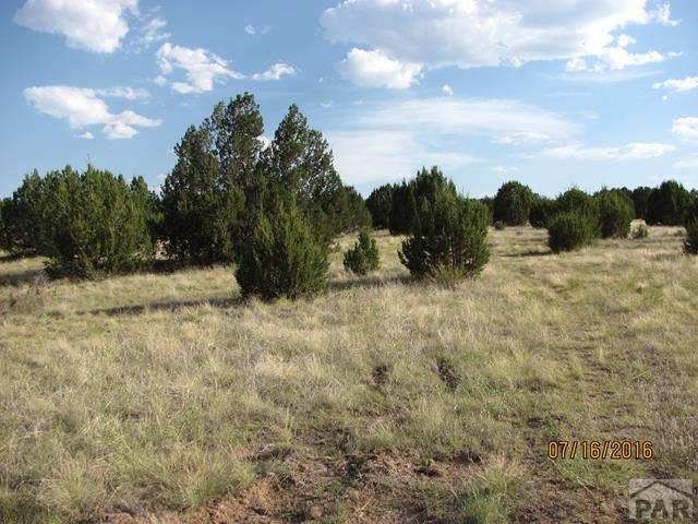 TBD Canyon Heights Rd #0, Pueblo, CO 81005 (MLS #180709) :: The All Star Team of Keller Williams Freedom Realty