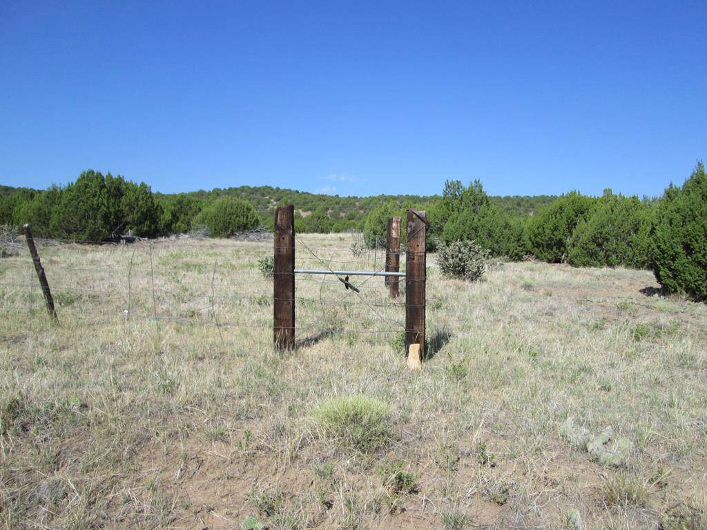 lot 59 Rowell Rd - Photo 1