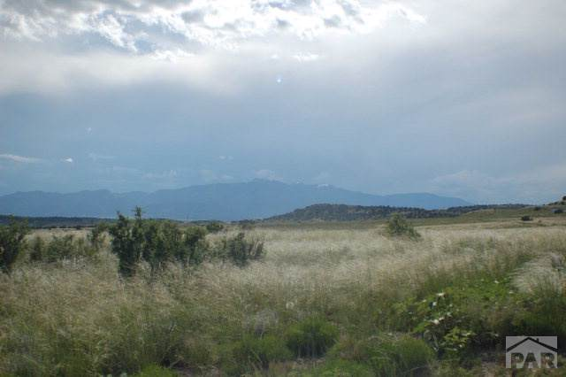 LOT 145 Ghost River Ranch #145, Rye, CO 81069 (MLS #182538) :: The All Star Team