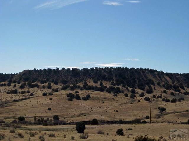 Par 65 Horse Creek Rd #65, Pueblo, CO 81004 (MLS #183265) :: The All Star Team of Keller Williams Freedom Realty