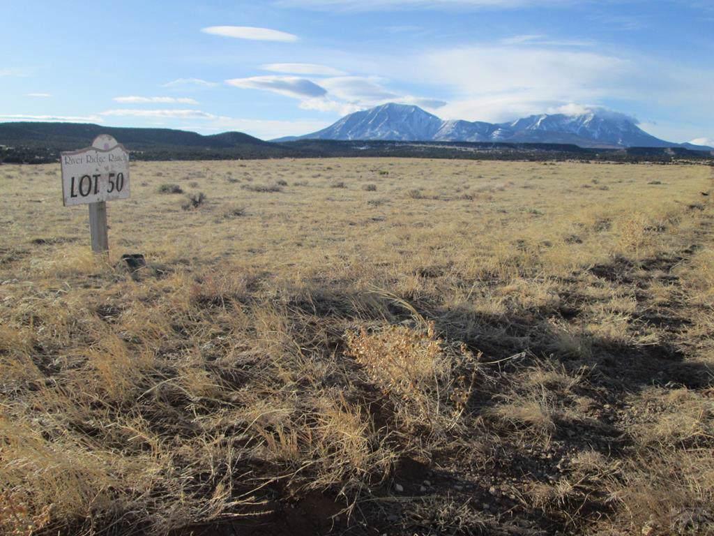Lot 50 River Ridge Ranch - Photo 1
