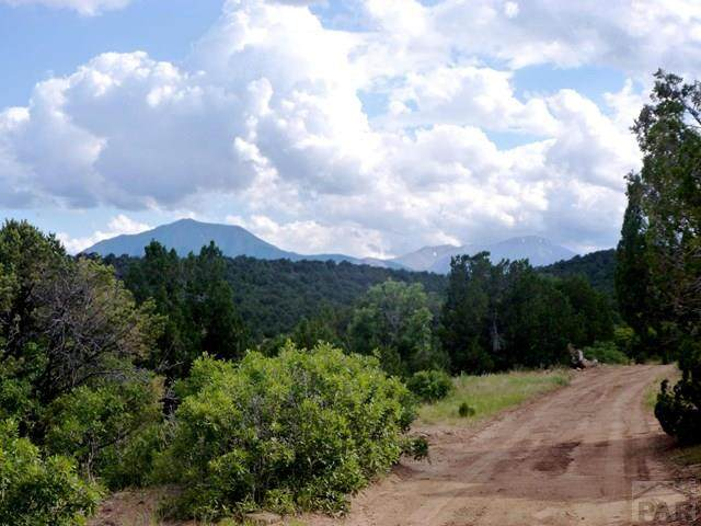 Lot 13 La Veta Pines Ranches #13, Walsenburg, CO 81089 (MLS #184582) :: The All Star Team of Keller Williams Freedom Realty