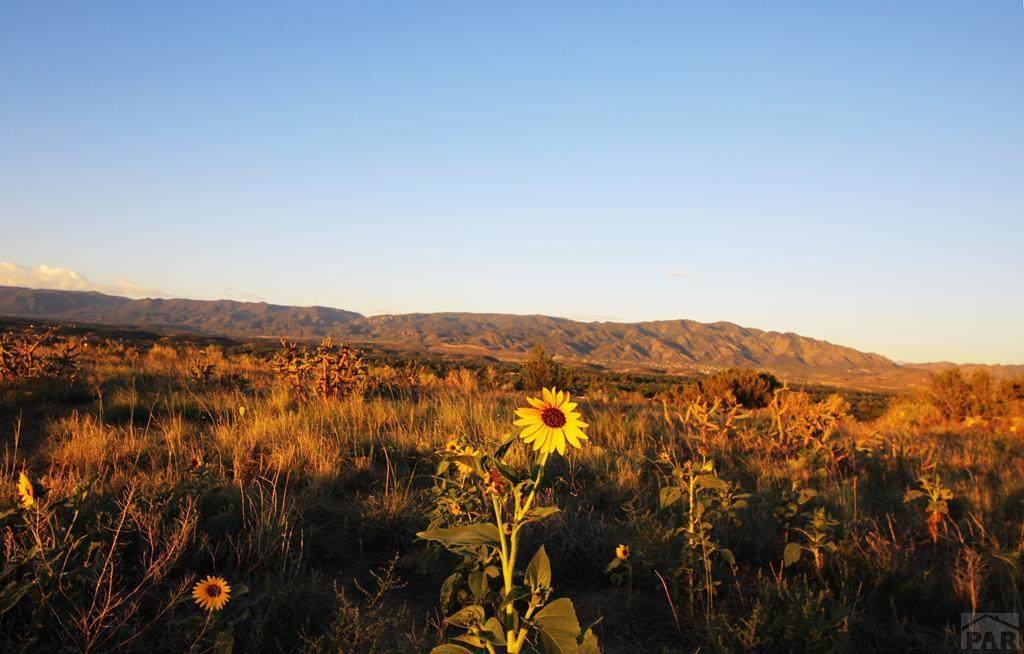 13 Sunrise Mesa Circle - Photo 1