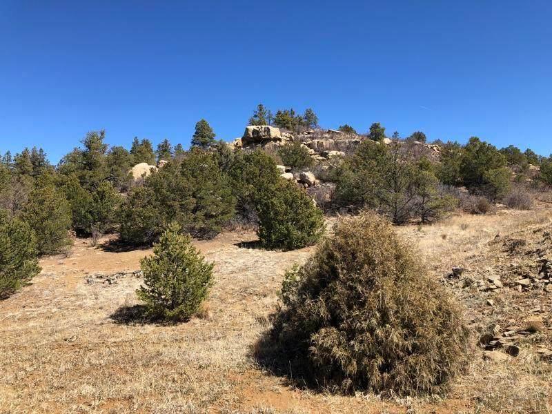 40 acres No Site Address - Photo 1