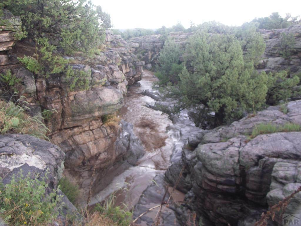 TBD Red Creek Springs Rd - Photo 1