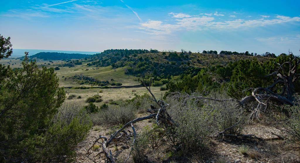 Lot 14 Apache Creek Ranch - Photo 1