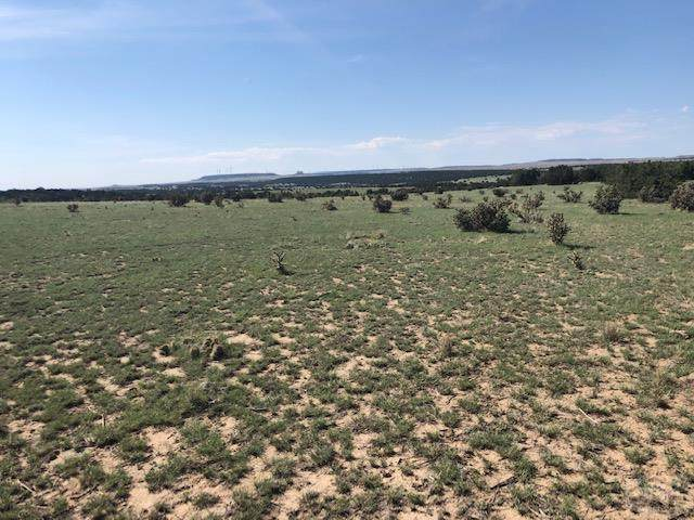 Lot 183 Tyrone Hills #183, Walsenburg, CO 81089 (MLS #188681) :: The All Star Team