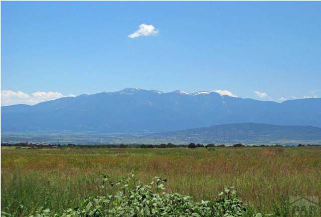 Par 99 William Finlay Dr #99, Rye, CO 81069 (MLS #190158) :: The All Star Team