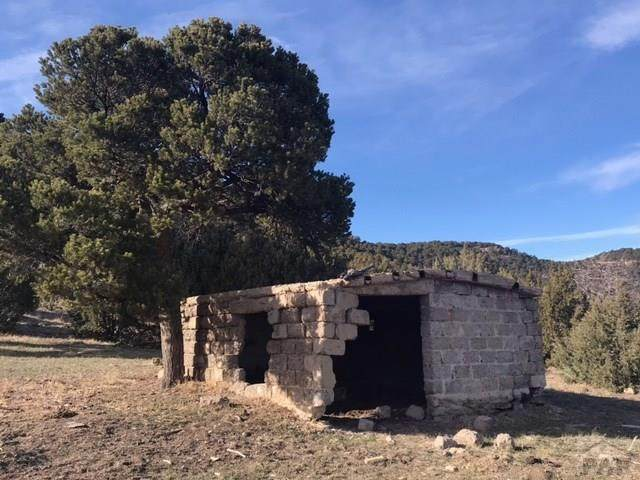 94 Rugby Mines Rd N/A, Aguilar, CO 81020 (MLS #190780) :: The All Star Team