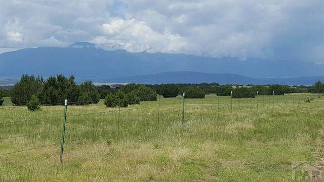 Par 102 William Finlay Dr #0, Rye, CO 81069 (MLS #191400) :: The All Star Team