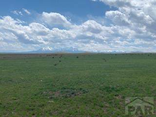 Lot 262 Colorado Land And Livestock #262, Walsenburg, CO 81089 (#193412) :: The Artisan Group at Keller Williams Premier Realty